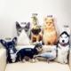 New Hot Photo customization DIY dog Cushion Plush Toys Dolls Stuffed Animal Pillow Sofa Car Decorative Creative Birthday Gift